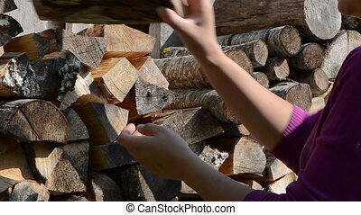 woman firewood take - woman hand pick up collect dry chopped...