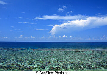Tropical Sea, Coral Reef - Yonaguni Island, Okinawa, Japan