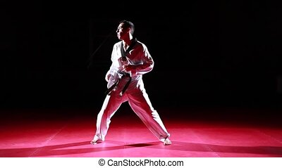 different taekwondo kicks - a athlete demonstrates different...