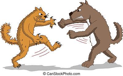 Cat versus Dog - Fight