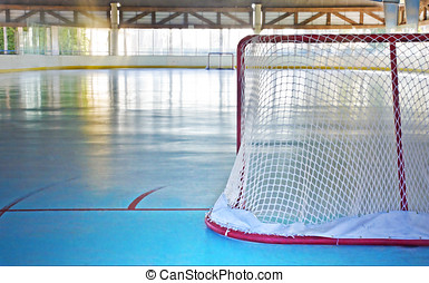 Behind the hockey net - Indoor roller hockey rink Horizontal...