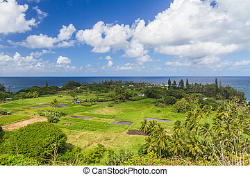 Keanae in Maui with Taro Fields - View of the Keanae...
