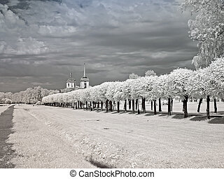 Farmstead Kuskovo - Infrared photography of avenue in a...