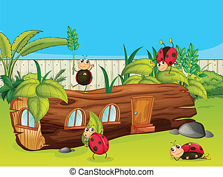 Ladybugs and a house - Illustration of ladybugs and a house...