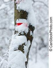 Inverno, sinal