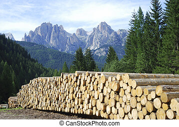 Firewood in the Dolomites - Pile of logs in the Dolomites of...