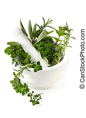 Herbs - Fresh herbs in a white mortar with pestle Herbs...