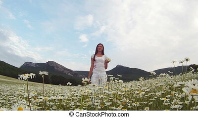 Blooming daisies - Woman picking the daisies and throwing...