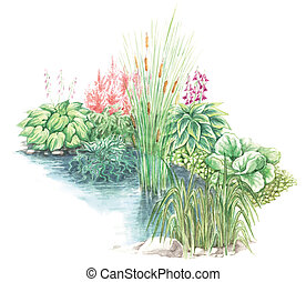 garden design nearly a water body - Watercolors hand painted...