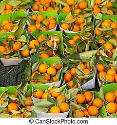 Kumquats in trays for sale at farmers market