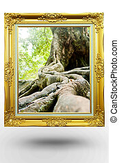 old antique gold frame in background tree over white...