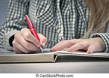 secret diary - frame girl hands writing diary