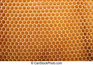 honey texture - natural honey texture without honey abstract...