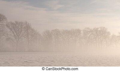 Winter Landscape - Winter Wonderland with Sun