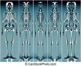 Five Silver Blue Alien Skeleton