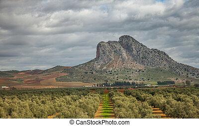 Andalucia Landscape - View of rural Andalucia, Spain
