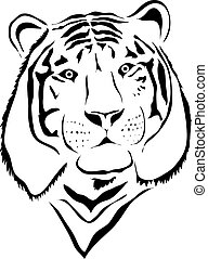 White tiger head - front view