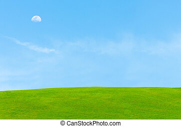 beautiful blue sky with moon and green grass field
