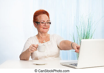 senior lady pointing to laptop screen - positive senior lady...