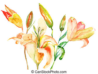 Yellow Lily flowers, watercolor illustration