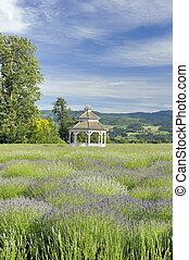 Lavender Farm Gazebo