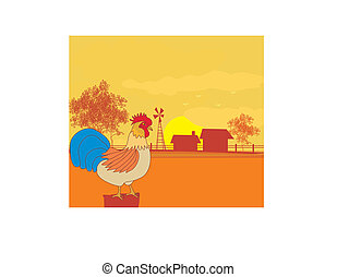 illustrations of crowing rooster on farm backgrounds.