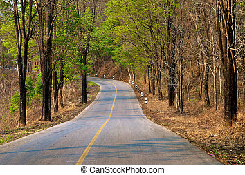 highway in forest hill - empty highway in forest hill with...