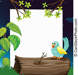 A bird and a white board