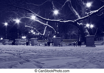 park at winter night in blue color