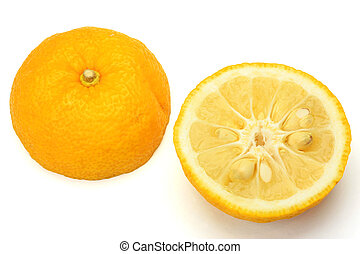 citron - I photographed citron in a white background