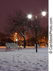 street lantern in park at winter night
