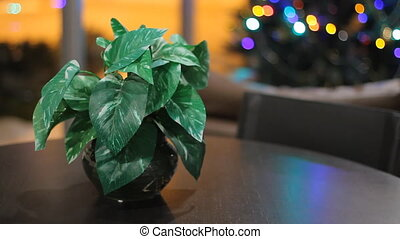 Christmas interior with plant on the table and christmas...