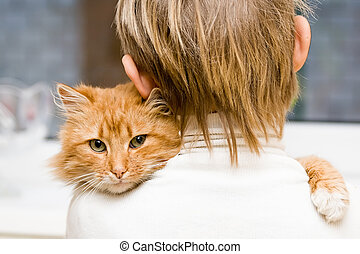 The red cat sitting on a shoulder at the child