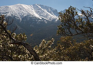 Great Basin NP, Nevada, US - Wheeler Peak: mountain with...