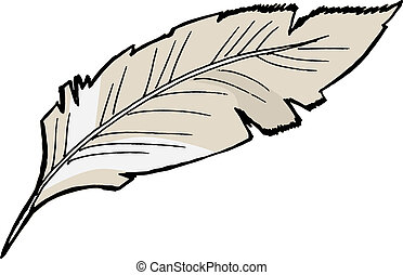 feather - Hand drawn, sketch illustration of feather