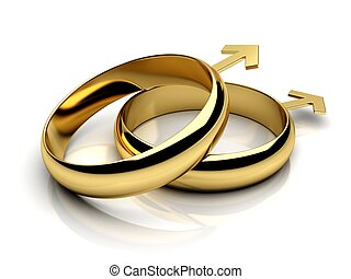 Gay male wedding rings on a white reflective isolated...