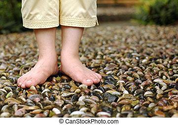 Foot Reflexology - A closeup on foot reflexology walk path...