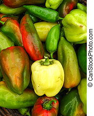 a lot of sweet bulgarian ripe peppers - the image of a lot...