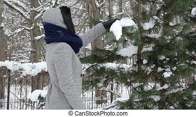 snow christmas tree clean - woman hands shake off winter...