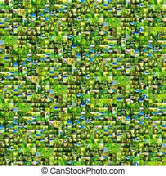 hintergrund, grün