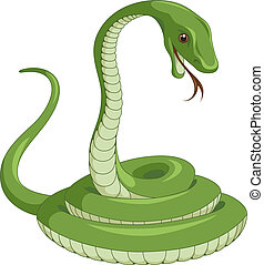 Snake - Green snake on the white background