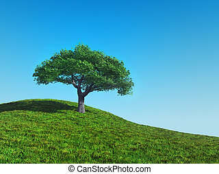 cherry tree - A illustration of a lonely cherry tree