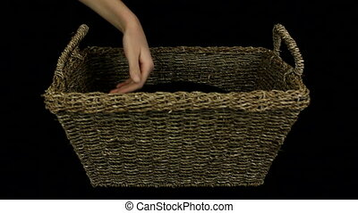 Woman petting black cat in a basket, on black background