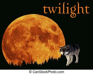 Twilight - Full moon