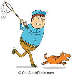 catching wild dog