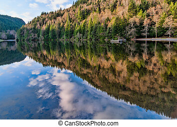 Alice Lake Forest Reflection - Reflection of forest in Alice...