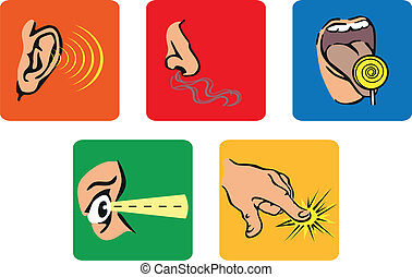 the five senses - Series of icons that represent the five...