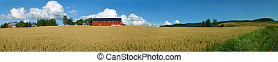 Norwegian Farm Panorama 2 - Panoramic view of a typical...