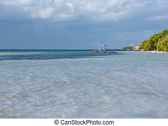 Florida Keys Annes Beach - Annes Beach by roadside in...