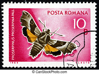 Postage stamp Romania 1969 Willowherb Hawkmoth, Moth -...